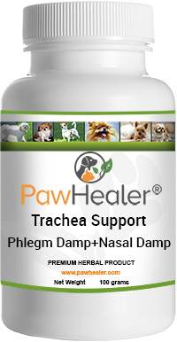 Trachea Support: Phlegm Damp+Nasal Damp Formula