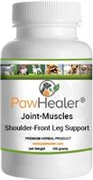 Dog front leg pain, canine front leg pain, dog front legs, canine front legs.