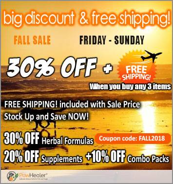 30% Off and Free Shipping