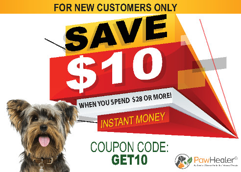 $10 Coupon for New Customers